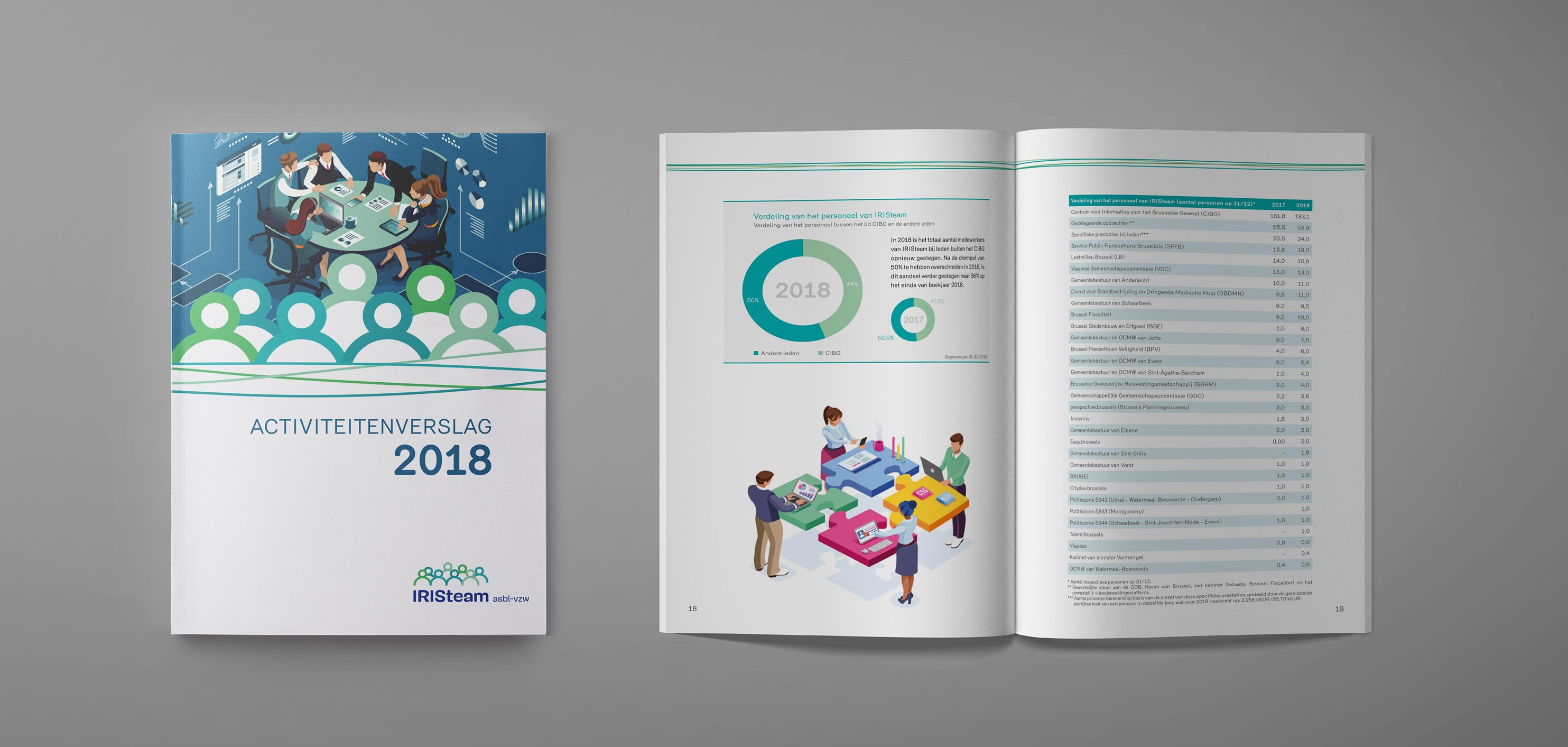 Rapport annuel 2018 IRISteam